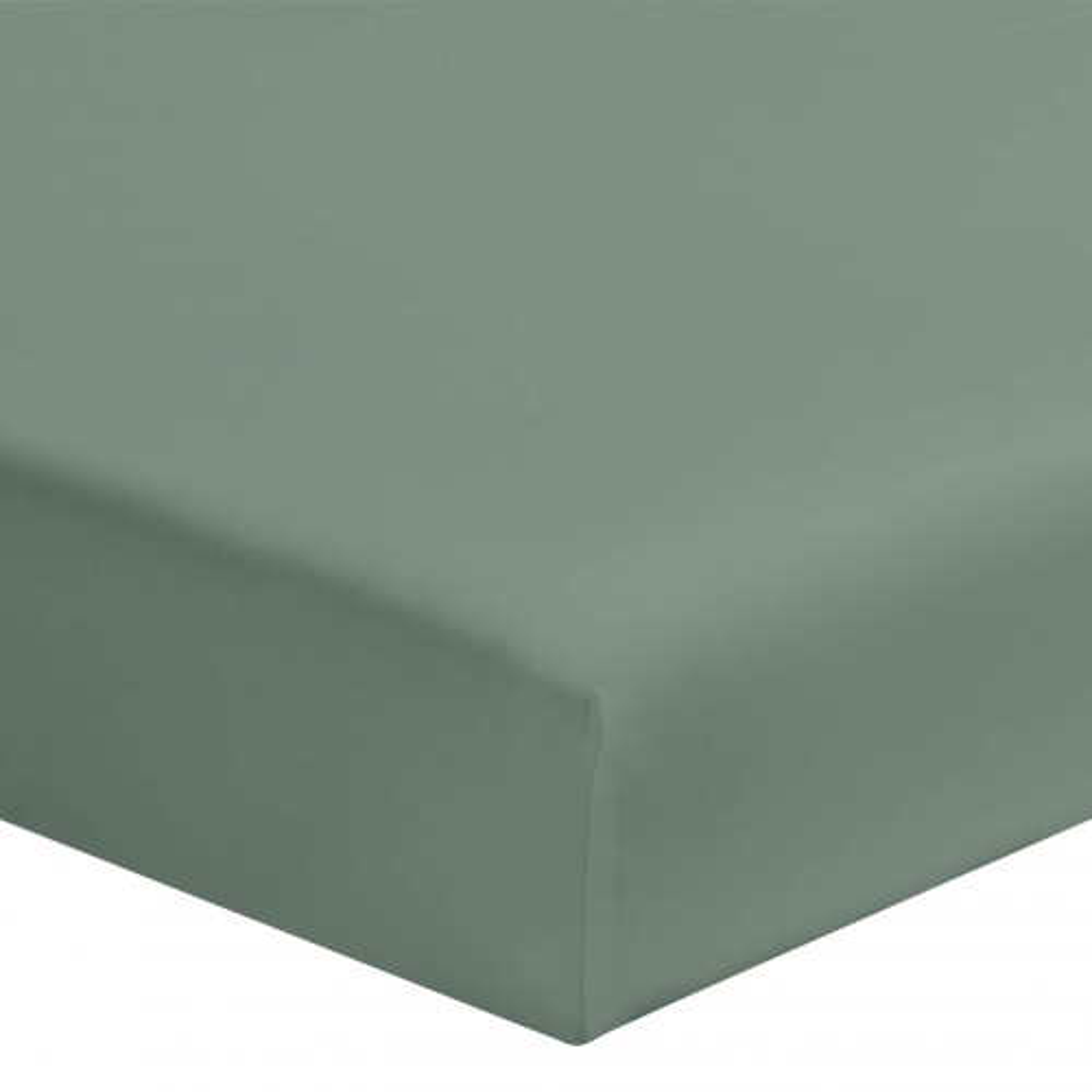 Drap housse vert de gris 100% coton bonnet 30 cm 110x190 cm - Hôtellerie